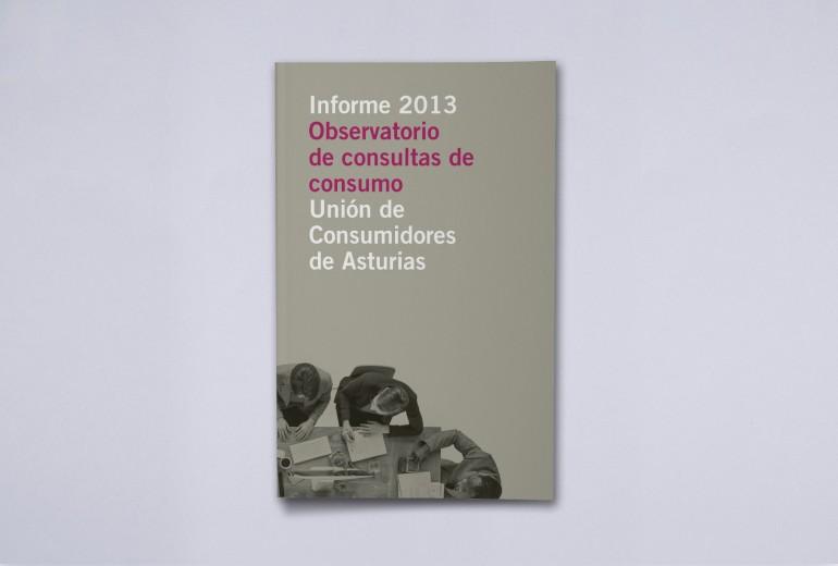 Informe de Consultas 2013